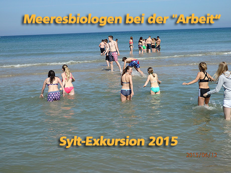 sylt exkursion2015